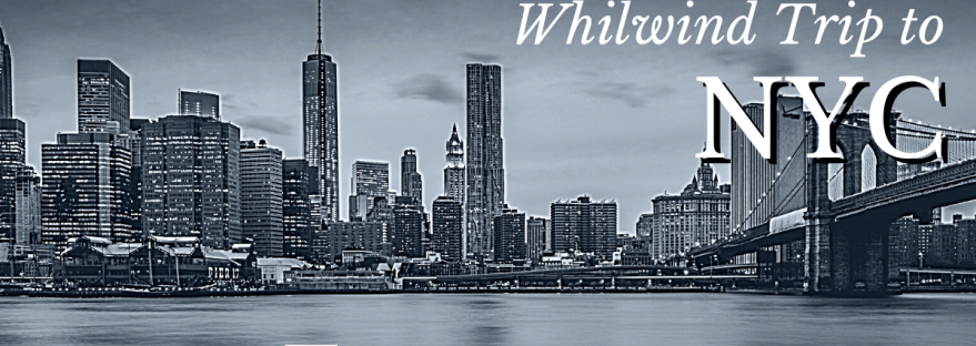 whilwind trip to new york city